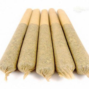 Animal Cookies Pre-Rolled Joints